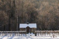 Cabana do inverno em Arrowtown Fotos de Stock Royalty Free
