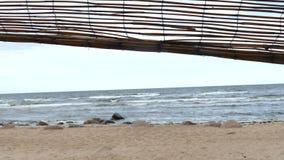 Cabana improvisada do abrigo da praia da madeira lançada à costa vídeos de arquivo