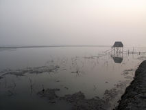 Cabana modesta da palha de pescadores indianos no Ganges, Sunderband, Índia fotos de stock royalty free