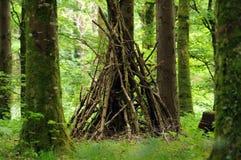 Cabana na floresta Foto de Stock