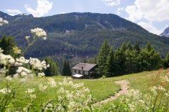 Cabana na inclinação nas montanhas Foto de Stock