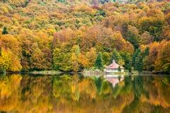 Cabana nas madeiras Fotos de Stock Royalty Free