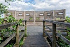 Cabana para a ornitologia no parque nacional holandês fotos de stock royalty free