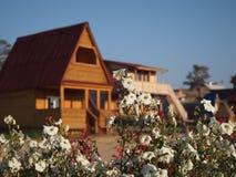Cabana rústica de madeira de madeira em Olkhon fotos de stock