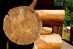 Cabana rústica de madeira de Michigan Imagens de Stock Royalty Free