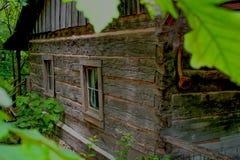 Cabana rústica de madeira em um ajuste da floresta Imagens de Stock Royalty Free
