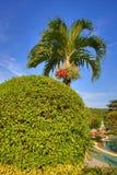 Cabana Resort, Loh-Dalum Bay, Phi Phi,  Thailand Royalty Free Stock Images