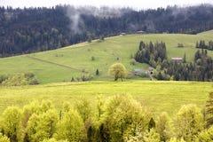 Cabana rural na inclinação das montanhas Carpathian no embaçamento da névoa da manhã Fotografia de Stock Royalty Free