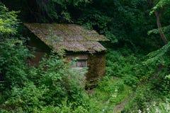 Cabana velha do tijolo na floresta Imagem de Stock