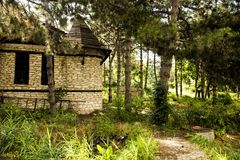 Cabana verde na floresta imagens de stock royalty free