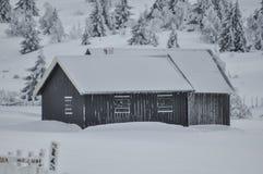 Cabanas acolhedores escondidas afastado na neve profunda e em uma floresta gelada imagem de stock royalty free