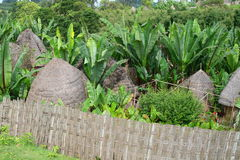 Cabanas africanas que misturam-se com os arredors Fotografia de Stock