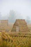 Cabanas da palha e da palha do arroz Imagem de Stock