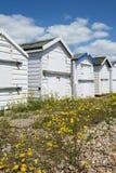 Cabanas de enesgamento da praia Imagens de Stock Royalty Free