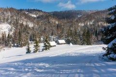Cabanas em uma floresta coberto de neve nas montanhas no inverno foto de stock royalty free