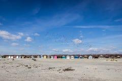 Cabanas pintadas da praia na praia ocidental de Wittering imagens de stock royalty free