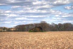 Cabane dans le vaste domaine Images stock