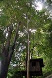 Cabane dans un arbre Photo libre de droits