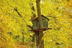Cabane dans un arbre Photos stock