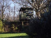 Cabane dans un arbre Image stock