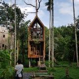 Cabane dans un arbre image libre de droits