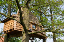 Cabane dans un arbre comme maison de vacances Image libre de droits