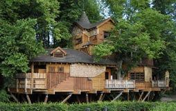Cabane dans un arbre d'Alnwick Images libres de droits