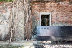 Cabane dans un arbre d'Anping Ce vieil entrepôt est couvert par s'est embranché de la branche de banian antique qui est Images stock