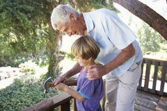 Cabane dans un arbre de bâtiment de grand-père et de petit-fils ensemble Photographie stock libre de droits