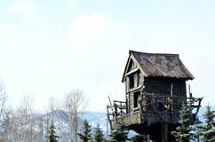 Cabane dans un arbre en bois Image libre de droits