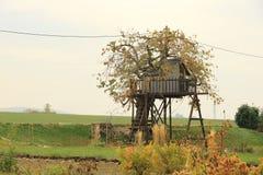 Cabane dans un arbre pour des enfants dans le jardin photo libre de droits