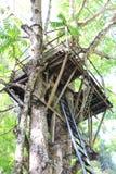 Cabane dans un arbre sur un grand arbre en bois Photo stock