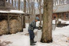 Cabane de sucre du Canada Photos libres de droits