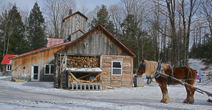 Cabanes de sucre photo libre de droits