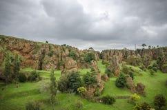 Cabarceno del parco naturale fotografie stock libere da diritti