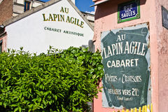 Lapin de Paris agile Photos libres de droits
