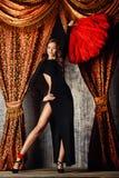 Cabaret Royalty Free Stock Photos