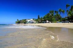 cabarete加勒比海岸线 库存照片