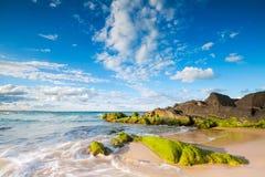 Cabarita beach Stock Image