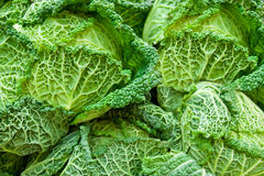 Cabbage. Close up of green cabbage taken in a marketplace Royalty Free Stock Image
