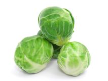 Cabbage Royalty Free Stock Photography