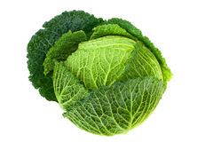 Cabbage. Dark green cabbage isolated on white background Stock Photo
