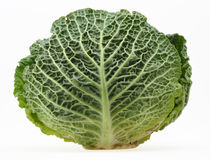 Cabbage. Ripe Savoy Cabbage Isolated on White Background with clipping path Royalty Free Stock Images