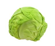 Cabbage. Young cabbage isolated on white background Royalty Free Stock Photos