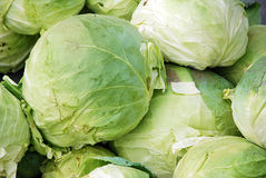 Cabbage. Fresh cabbage sold in a local market Royalty Free Stock Photo