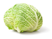 Cabbage. Stock Photo