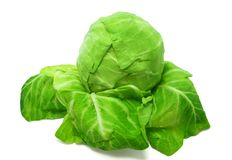 Cabbage. On a white background Royalty Free Stock Photo