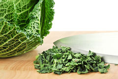 Free Cabbage Royalty Free Stock Photography - 17239027