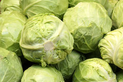 Cabbage. The close-up of green cabbage Royalty Free Stock Images