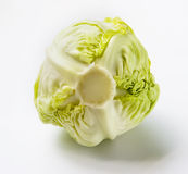Cabbage. The cabbage, scientific name (Brassica oleracea ball cabbage L.v ar. Capitata l.), cruciferous (Cruciferae), canola of Brassica oleracea L for cabbage Stock Images